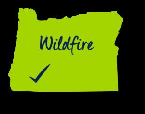 Representative Kim Wallan - Oregon Wildfire Prevention
